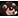:gallobearmask: Chat Preview
