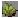 :somegrass: