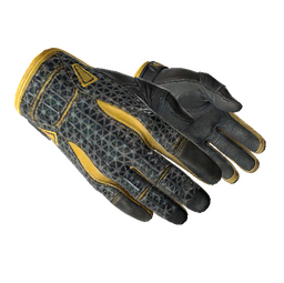 ★ Sport Gloves | Omega (Field-Tested)