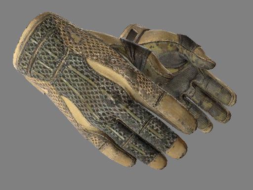 Sport Gloves | Arid Battle-Scarred