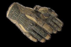 Sport Gloves Arid Battle Scarred