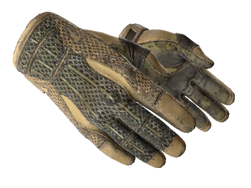 ★ Sport Gloves | Arid Battle-Scarred