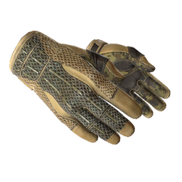 ★ Sport Gloves | Arid (Field-Tested)