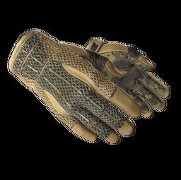★ Sport Gloves | Arid (Well-Worn)