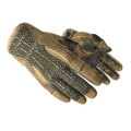 ★ Sport Gloves | Arid <br>(Well-Worn)