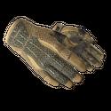 ★ Sport Gloves | Arid