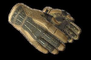 Sport Gloves Arid Minimal Wear