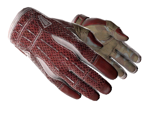 ★ Sport Gloves | Slingshot (Battle-Scarred)