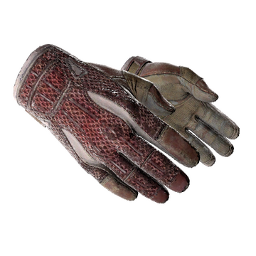 ★ Sport Gloves | Slingshot