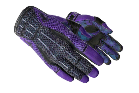 ★ Sport Gloves | Pandora's Box (Well-Worn) Prices