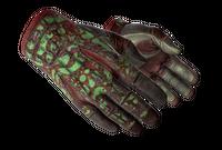 ★ Sport Gloves   Bronze Morph (Battle-Scarred)