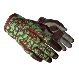 ★ Sport Gloves | Bronze Morph (Factory New)