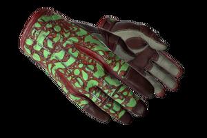 Sport Gloves Bronze Morph Minimal Wear