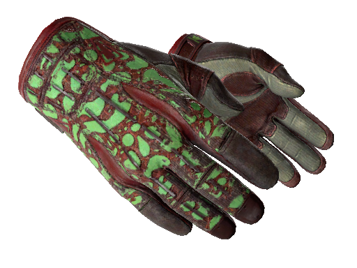 ★ Sport Gloves | Bronze Morph (Well-Worn)