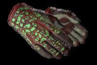 ★ Sport Gloves   Bronze Morph (Field-Tested)