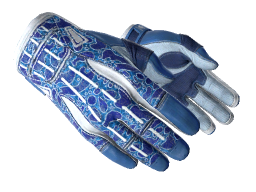 ★ Sport Gloves | Amphibious (Minimal Wear)