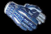 ★ Sport Gloves   Amphibious (Minimal Wear)