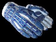 ★ Sport Gloves | Amphibious (Factory New)