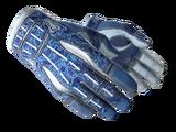 ★ Sport Gloves | Amphibious (Field-Tested)