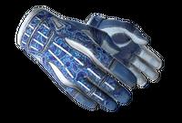★ Sport Gloves   Amphibious (Field-Tested)