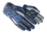 ★ Sport Gloves | Amphibious (Battle-Scarred)