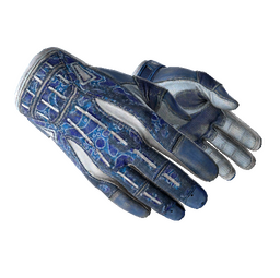 ★ Sport Gloves | Amphibious (Battle-Scarred)