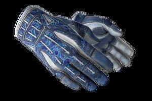 Sport Gloves Amphibious Battle Scarred