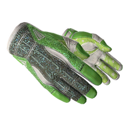 ★ Sport Gloves | Hedge Maze (Minimal Wear)