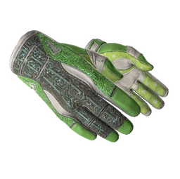 ★ Sport Gloves | Hedge Maze (Well-Worn)