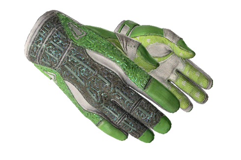 ★ Sport Gloves | Hedge Maze (Well-Worn) Prices