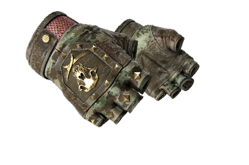★ Bloodhound Gloves | Guerrilla (Battle-Scarred) Prices