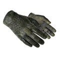 ★ Driver Gloves | Racing Green <br>(Battle-Scarred)