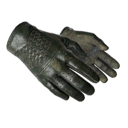★ Driver Gloves | Racing Green (Well-Worn)