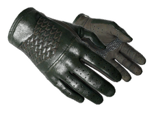 Skin ★ Driver Gloves | Racing Green