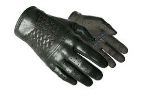 Driver Gloves Racing Green Minimal Wear