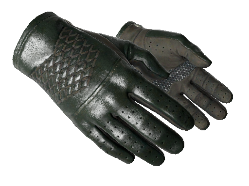 ★ Driver Gloves | Racing Green (Minimal Wear)