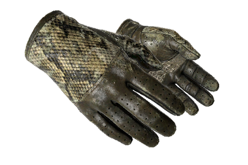 ★ Driver Gloves | Diamondback (Battle-Scarred) Prices