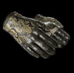 ★ Driver Gloves | Diamondback (Field-Tested)