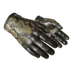 Driver Gloves | Diamondback