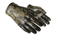★ Driver Gloves | Diamondback (Field-Tested)