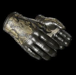 ★ Driver Gloves | Diamondback (Factory New)