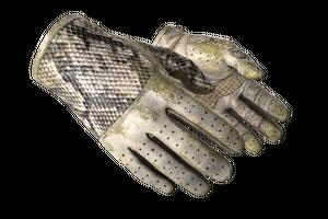 Driver Gloves King Snake Battle Scarred