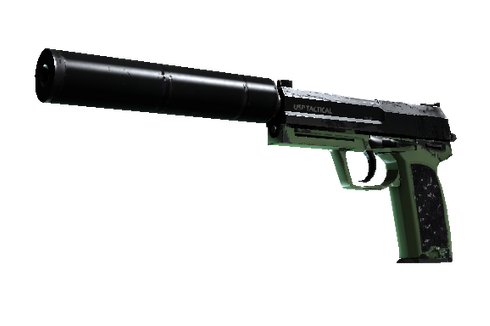 Buy USP-S | Para Green (Well-Worn)
