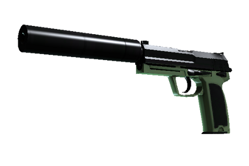 Buy USP-S | Para Green (Factory New)