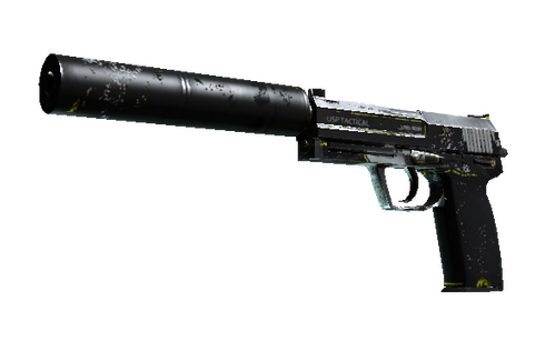 Buy USP-S | Torque (Battle-Scarred)