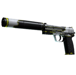 StatTrak™ USP-S | Torque (Well-Worn)