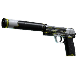 USP-S | Torque (Field-Tested) image