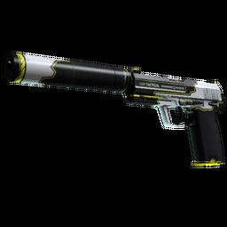 StatTrak™ USP-S | Torque (Factory New)