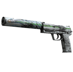 USP-S | Road Rash (Well-Worn)