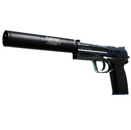 StatTrak™ USP-S | Guardian (Field-Tested)